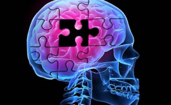 Наркотики и мозг